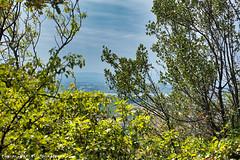 Devant la grotte du Renard, vue sur la vallé du Rhône, au loin le Vercors... (Pascal Rey Photographies) Tags: lesgrottesdesoyons soyons ardéche auvergnerhônealpes france néanderthal sitepréhistorique grottes concrétionscalcaires pascalrey nikon d700 luminar3 skylum aurorahdr photographiecontemporaine photos photographie photography photograffik photographiedigitale photographienumérique photographierurale pascalreyphotographies