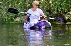A Miniature Dachshund in a canoe! (Jen Buckle) Tags: miniaturedachshund dachshund canoe kayak water riverstour river nikon nikond7500 jenbuckle jenbucklephotographsanything jenbucklephotographienimportequoi wwwflickrcompeoplejenbuckle