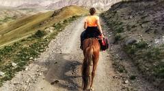 Back from vacation (Luc1659) Tags: cri vacanze cavallo montagna estate passeggiata horse summer cavalcade mountain orange
