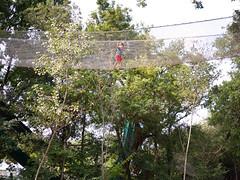 Là-haut (Dahrth) Tags: lumixμ43 lumixmicroquatretiers lumixgf1 lumix20mm gf120 panasoniclumixgf1 20mmpancake boisdeslutins passerelle altitude footbridge arbres trees chemindecorde kid boy garçon adventure aventure