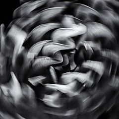 Spinning pasta.... (+Pattycake+) Tags: pasta macro macromondays ©patriciawilden2019 abstract movement tesco blackandwhite glutenfreefusilli
