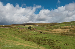 High Beck Head Farm under a big sky Sep 2019 1 (Richard Laidler) Tags: aonb agriculture areaofoutstandingnaturalbeauty barn barns bigsky bluesky blustery buildings clouds cold ettersgill farm farmhouse farming fine globalgeopark highbeckhead hillfarm isolated northeastengland northpennines northpenninesaonb rural sunny sunshine teesdalelandscape upperteesdale whitewashed