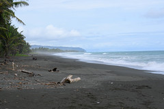 Carate Beach (RosePerry1107) Tags: caratebeach beach ocean pacificocean costa costarica osapeninsula nikon nikonz6