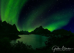 Northern lights, Lofoten Islands , Norway (Gaston Batistini) Tags: northernlights lofotenislands norway batistini gbatistini aurora borealis sky colors green northern lights lofoten islands