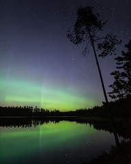Location: Darkness (laurilehtophotography) Tags: suomi finland jyväskylä kivilampi vaajakoski northernlights auroras auroraborealis nightscape landscape nature star starrysky night autumn fall syksy reflections lake pond forest trees revontulet luonto nikon d750 sigma 20mm art wideangle nightphoto longexposure