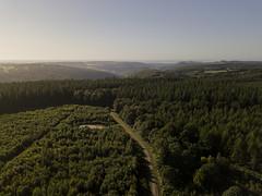WhitestoneWalk-0005-1 (kinega) Tags: dji mavicpro wales whitestonewalk wyevalley aerial trees woods
