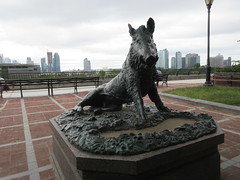 Happy 2019 Year of the Wild Boar statue East 57th St 9911 (Brechtbug) Tags: happy 2019 year wild boar statue replica bronze porcellino completed 1634 by renaissance sculptor pietro tacca 1557 1640 the original is marble housed uffizi gallery florence italy this dude sits off sutton place park east 57th street next river all done with renovations nyc 09022019 new york city