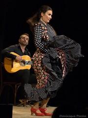 "Flamenco La Cecilia 126.NEF • <a style=""font-size:0.8em;"" href=""http://www.flickr.com/photos/161151931@N05/48665714146/"" target=""_blank"">View on Flickr</a>"