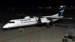 Westjet Encore Q400 C-GENV @YYT (nielsamd) Tags: 442 cgenv bombardier q400 encore westjet stjohn's yyt