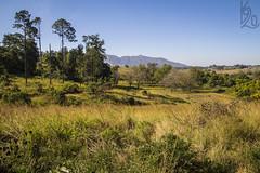 Mlilwane Wildlife Sanctuary (katka.havlikova) Tags: eswatini swaziland nature wildlife sanctuary hills landscape countryside naturepark park nationalpark africa travel cestování svazijsko