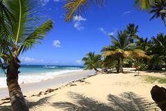Playa Rincón 0052 (Daniel G B) Tags: playarincón repúblicadominicana samana