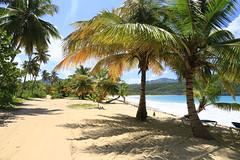 Playa Rincón 0042 (Daniel G B) Tags: playarincón repúblicadominicana samana