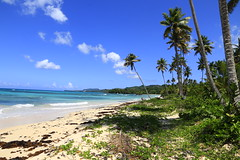Playa Rincón 0041 (Daniel G B) Tags: playarincón repúblicadominicana samana