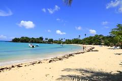 Playa Rincón 0027 (Daniel G B) Tags: playaelvalle repúblicadominicana samana