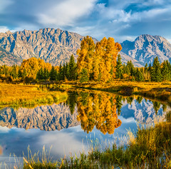 Reflections of Fall (Wycpl) Tags: