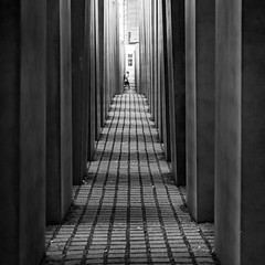 we tend to lose our way / In the forest of the concrete slabs (Özgür Gürgey) Tags: 11 2019 24120mm bw berlin d750 memorialtothemurderedjewsofeurope nikon architecture history lines people square symmetry