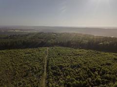 WhitestoneWalk-0004 (kinega) Tags: dji mavicpro wales whitestonewalk wyevalley aerial trees woods