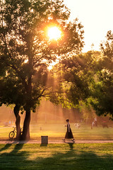 Summer Sunset, Sofia (Sebastian Pier Filip) Tags: panasonic lumix zs200 tz200 pointandshoot pointnshoot pocketablecamera smallcamera 1inchsensor sunset sofia street silhouette sunbeams sun orange green bulgaria park bike shadow walk girl tree landscape