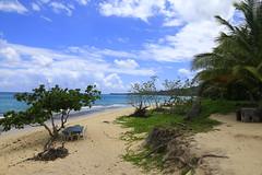 Playa Rincón 0011 (Daniel G B) Tags: playaelvalle repúblicadominicana samana