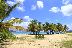 Playa Rincón 0003 (Daniel G B) Tags: playaelvalle repúblicadominicana samana