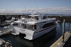 Puget Sound Express, MV Saratoga 2019-09-01 SU IMG_9357 (acturpin) Tags: pugetsoundexpress mvsaratoga