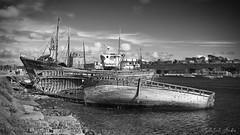Camaret-sur-Mer Finistère-Bretagne (arottatinti) Tags: noiretblanc camaret epave langoustiers navire bretagne finistère france tour vauban