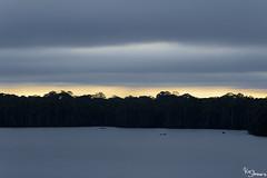 Sandoval Lake (Kusi Seminario) Tags: tambopata madrededios peru southamerica sudamerica nature rainforest selva jungle amazon amazonia amazonas travel outdoors lake lago water agua