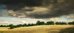 The interrupted harvest (Wojttek) Tags: zachodniopomorskie poland