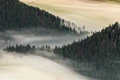 morning in Orava, Slovakia