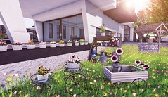 Garden Secrets (Rose Sternberg) Tags: deco decor home garden interior second life 2019 event bee designs gacha for shiny shabby nine white wicker planters with different flowers two compositions 69 l per play sways hanae flower ladder light whishing well bucket edge moon gardens texture changing grass moving maven homes vita