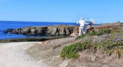 Peintre (P-ZiB) Tags: peintre peinture mer îledyeu toile rochers