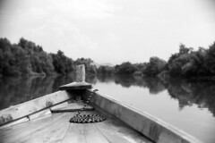 Skadar Summer  (Acros Neopan 100) (Harald Philipp) Tags: montenegro skadar lake boat softfocus dof fm3a nikon nikkor acros iso100 d76 135 35mm 55mm f12 vignetting blackandwhite film analog analogue fujifilm neopan nationalpark travel tourism landscape