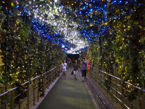 The path to Tokyo Tower