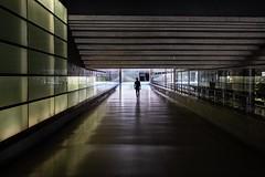 Berlin 2019-2 (Issov62) Tags: berlin metro ubahnhof potsdamer platz