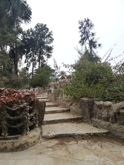 Up to Heaven (Abdullah Taher) Tags: white winter wood mobile phone photo photograph palm nature ngc stairs up egypt egyptian rock travel tree sky day image africa architecture shot flower flowers green garden grass high life landscape cairo silence