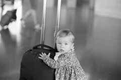 This bag is mine now! Go away!  (APX 100) (Harald Philipp) Tags: aleksa nikon fm3a nikkor f12 agfa apx100 d76 airport bag child 135 35mm blackandwhite monochrome nocolor