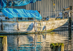 Under the cover (Picture-Perfect Spaces) Tags: sailboat sooke vancouverisland britishcolumbia water reflections blues buoys governmentdock beautifullighting wwb