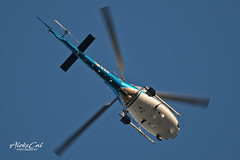 California Highway Patrol N217HP (aleks_cal) Tags: helicopter chopper aviation chp california los angeles eurocopter klax lax airport helicoptero belly