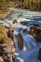 Sunwapta Falls 1 (mjschrems2) Tags: sunwaptafalls jasper national park alberta canada river water fall waterfall