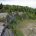 Columbus Limestone (Middle Devonian; North Side Quarry, Kelleys Island, Lake Erie, Ohio, USA) 34