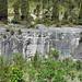 Columbus Limestone (Middle Devonian; North Side Quarry, Kelleys Island, Lake Erie, Ohio, USA) 45