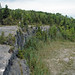 Columbus Limestone (Middle Devonian; North Side Quarry, Kelleys Island, Lake Erie, Ohio, USA) 32