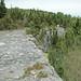 Columbus Limestone (Middle Devonian; North Side Quarry, Kelleys Island, Lake Erie, Ohio, USA) 31