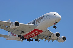"""Emirates """"United For Wildlife"""" Livery (A6-EOM) - LAX (jebzphoto) Tags: airlines airline airliner airliners airplane airplanes aviation aircraft plane planes planespotting flight los angeles international airport airports klax lax commercial airbus a380 special livery scheme"""