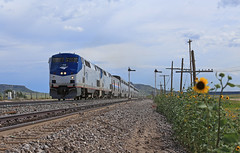 Levy (GLC 392) Tags: semaphore signal signals blade blades amtrak amtk ge p42dc southwest chief train 4 railway railroad passenger 16 158 sun flower flowers nm new mexico wagon mound levy code line