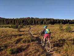 Rose to Van Sickle to bottom of Toads (benjaminfish) Tags: tahoe summer august september 2019 mountain bike rose toads rim trail kid ride