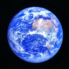 Blue planet (Raymonde Contensous) Tags: paris muséumhistoirenaturelle mnhn expositions oceanuneplongéeinsolite grandegalerieévolution science jardindesplantes blueplanet