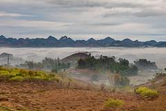 _MG_0046.0110.Thị trấn Mộc Châu.Mộc Châu.Sơn La (hoanglongphoto) Tags: asia asian vietnam northvietnam northwestvietnam northernvietnam landscape scenery vietnamlandscape vietnamscenery mocchaulandscape morning sky mist hillside canon canoneos5dmarkii tâybắc sơnla mộcchâu thịtrấnmộcchâu phongcảnh buổisáng bầutrời mây sươngmù sươngsớm sươngsớmmộcchâu phongcảnhmộcchâu dãynúi núi mocchautown mountains earlymorningfog canonef2470mmf28lusm plateau mocchauplateau caonguyênmộcchâu