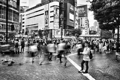 Tokyo - Shibuya Crossing Mood (Mark_66it) Tags: tokyo japan japanesepeople streetphoto photo blacknwhite blackwhite nikon d810