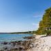South-west coast of Silba island, Croatia